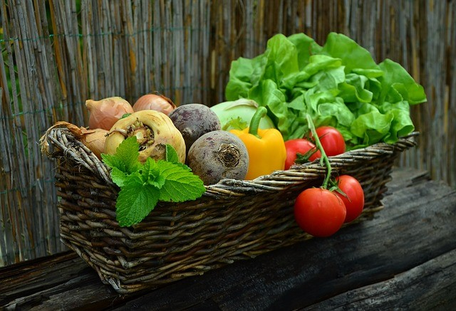 Cost of Food Skyrocketing – Garden Sheds for Affordable Organic Veggies All Year Long