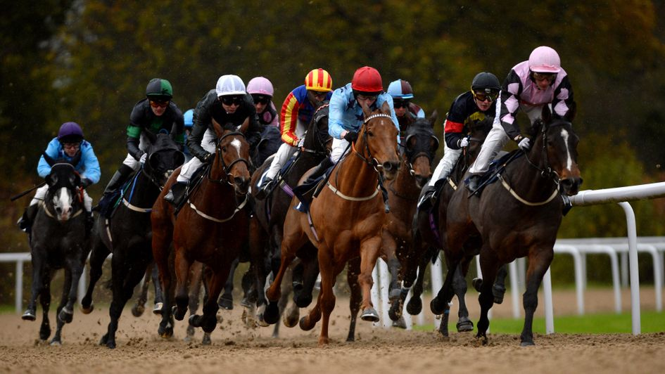Betting on horse racing throughout the week