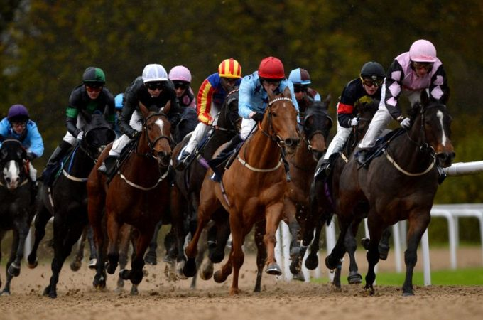 Are Shorter Horse Races More Predictable?