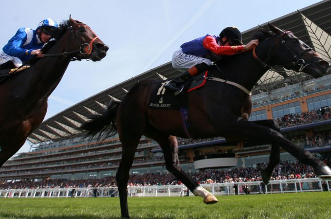 Horses to watch out for at the upcoming Royal Ascot meeting