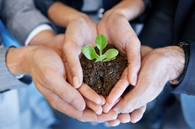4 Tips for Responsible Business Growth